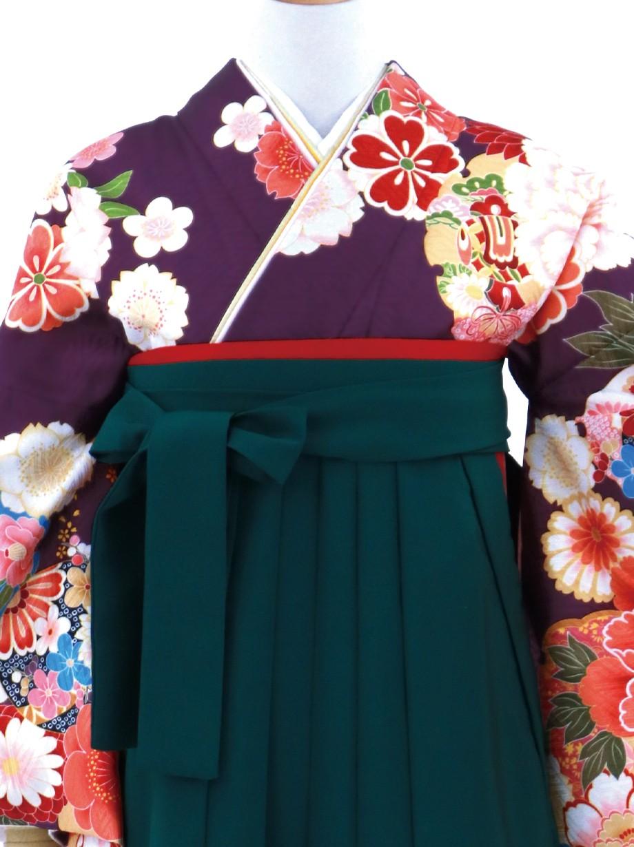 葡萄(えび)色地に牡丹と雪輪・緑袴(無地)(二尺袖)/卒業式