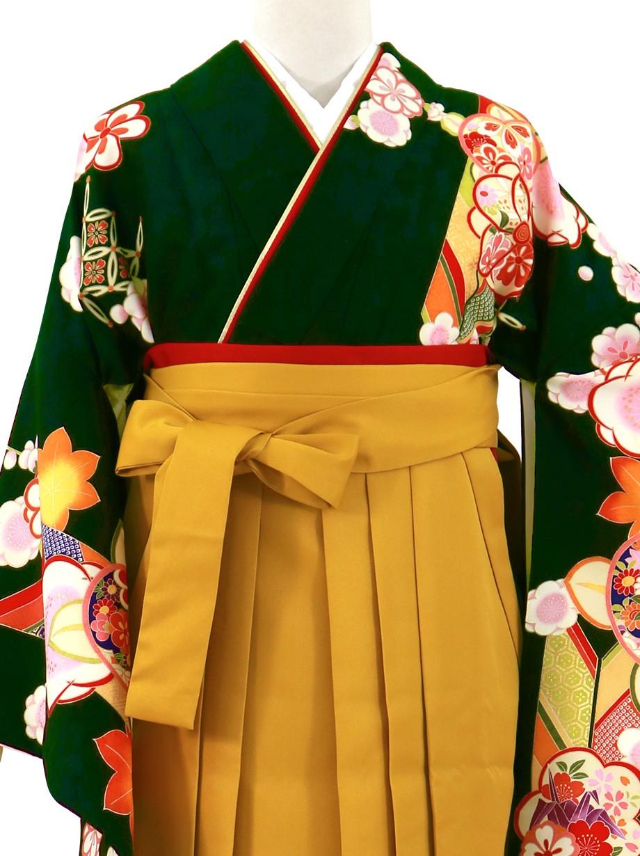 濃緑地に橘と矢絣、マスタード袴(無地)(二尺袖)/卒業式