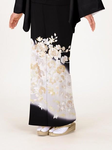 胡蝶蘭の黒留袖
