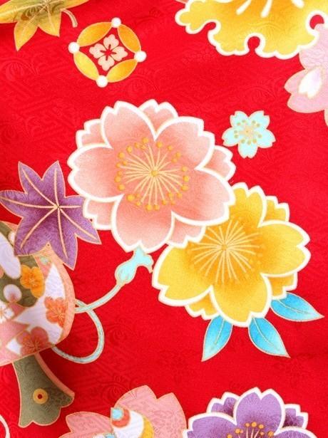 赤地に桜と宝尽くし・黒袴(小学生)/卒業式