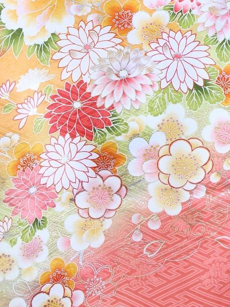 アプリコットに花車と桜の振袖/標準サイズ